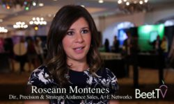 Marketers Want Their Dollars To Work Harder: A+E's Montenes